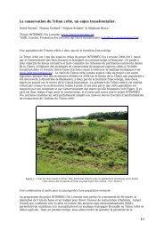 restauration de l'habitat du Triton crêté - INTERREG IVa Lorraine