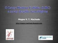 O Large Hadron Collider (LHC) e Novos Desafios tecnológicos