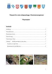 Tilsynsplanen - Lier kommune