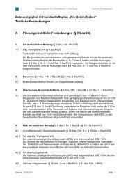 Textliche Festsetzungen - Reinheim
