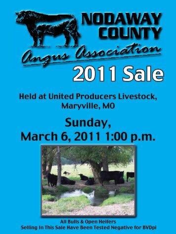 2011 Sale - Angus Journal