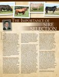 1AN01119 - Angus Journal - Page 3