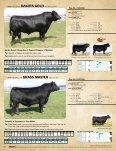 1AN01119 - Angus Journal - Page 6