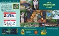 Ohio Wildlife Diversity and Endangered Species Program