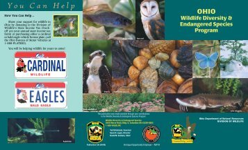 Ohio Wildlife Diversity and Endangered Species Program