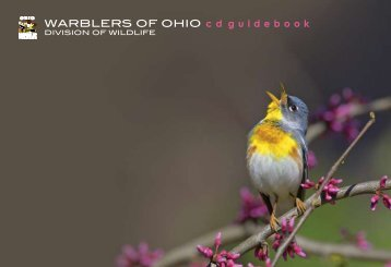 WARBLERS OF OHIO c d guidebook - Ohio Department of Natural ...