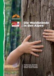 Die Waldbrände in den Alpen - Alpine Space Programme