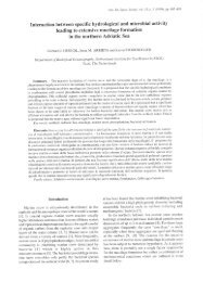 Interaction between specific hydrological and microbial activity ...