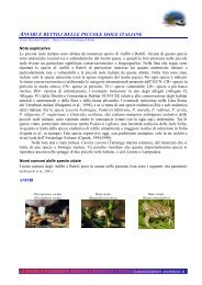 Anfibi e rettili delle piccole isole italiane - Carabinieri