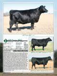 EVANS FARMS - Page 6