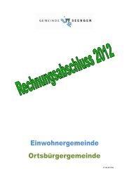 Rechnungsabschluss 2012 - Seengen