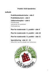 Praktikstedsbeskrivelse - Sønderbroskolen