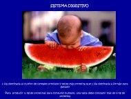 6- Sistema Digestivo
