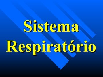 Sistema Respiratório - Visgraf