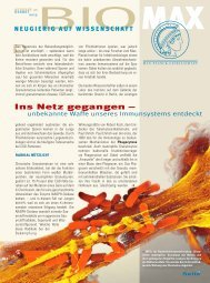 Heft-Download PDF - Max Wissen