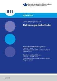 Elektromagnetische Felder - Kommunale Unfallversicherung Bayern