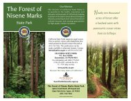 The Forest of Nisene Marks - California State Parks