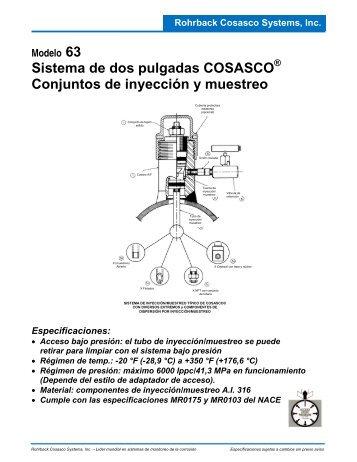 Sistema de dos pulgadas COSASCO Conjuntos de inyección y ...