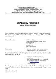 ZNALECKÝ POSUDEK číslo: 5728-1874/2012 - e-aukce