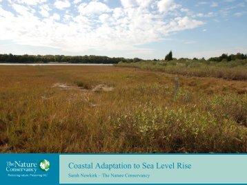 Coastal Adaptation to Sea Level Rise - Elkhorn Slough Foundation