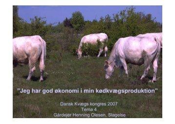 """Jeg har god økonomi i min kødkvægsproduktion"""" - LandbrugsInfo"""