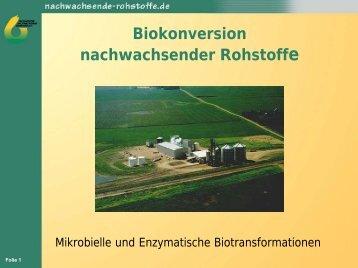 Biokonversion nachwachsender Rohstoffe - DECHEMA
