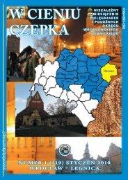 STYCZEŃ 2010 ( 1105 kB) - Dolnośląska Okręgowa Izba ...