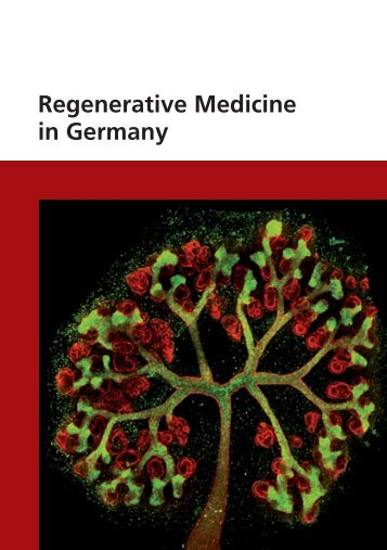 Regenerative Medicine in Germany - Biotechnologie