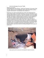 1 Druid Cave Rerigging Trip, July 3rd 2006 ... - Cavediggers.com