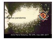 Influenza pandemic 300507