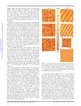 Tunable symmetry and periodicity in binary supramolecular ... - Page 4