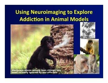 Animal models of addiction