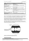 Forschungsbericht über einen Brandversuch an einer ... - Seite 5