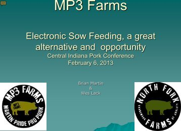 MP3 Farms