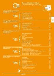 Elektrische Energieverteilung - Schneider Electric