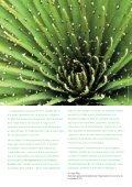 Biodiversité : mon hôtel agit - Caribbean Tourism Organization - Page 5