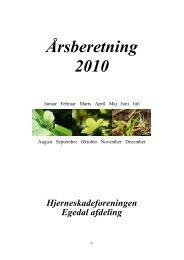 Årsberetning 2010 - Hjerneskadeforeningen