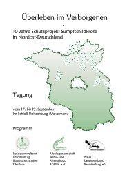 Überleben im Verborgenen - Amphibien