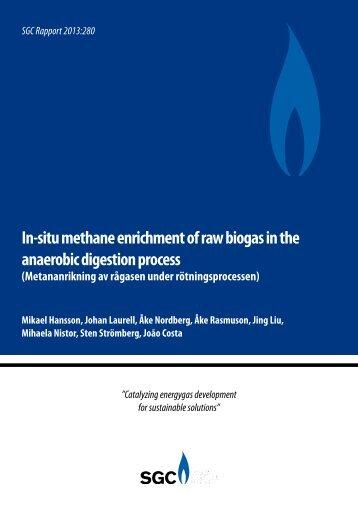 In-situ methane enrichment of raw biogas in the ... - Biogasmitt