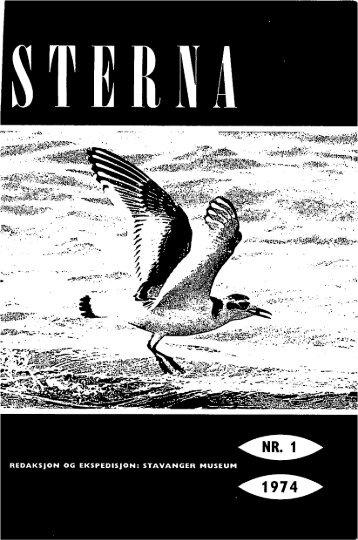 Sterna, bind 13 nr 1 (PDF-fil) - Museum Stavanger