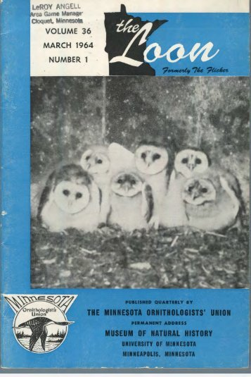 volume 36 march 1964 number 1 - Minnesota Ornithologists' Union