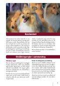 Hundutställning - Svenska Kennelklubben - Page 3