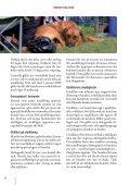 Hundutställning - Svenska Kennelklubben - Page 4