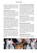Hundutställning - Svenska Kennelklubben - Page 7