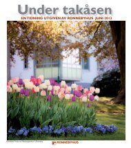 Ladda ner tidningen - Ronneby kommun