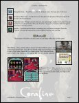 Nintendo DS Game Guide - D3Publisher - Page 5