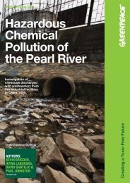 Hazardous Chemical Pollution of the Pearl River - Greenpeace ...