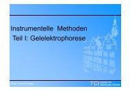 Gelelektrophorese - TCI @ Uni-Hannover.de
