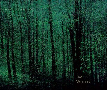 Jim Whitty - First exhibition's catalogue - Adam Gallery