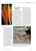 Das Fernsehen – die mediale ... - BMELV-Forschung - Seite 7